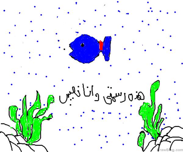 رسم سمكة