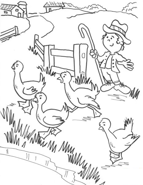 تلوين طيور في المزرعة تعلم الرسم
