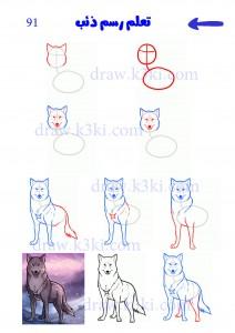 كيفية رسم ذئب - تعلم رسم ذئب