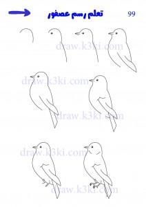 كيفية رسم عصفور