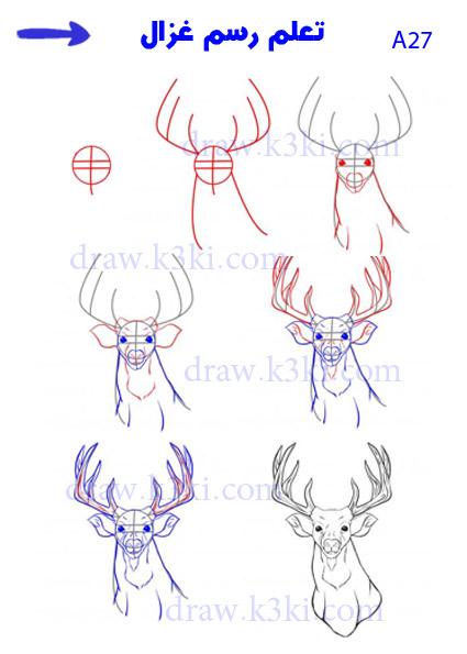 تعلم رسم الحيوانات - تعلم رسم غزال