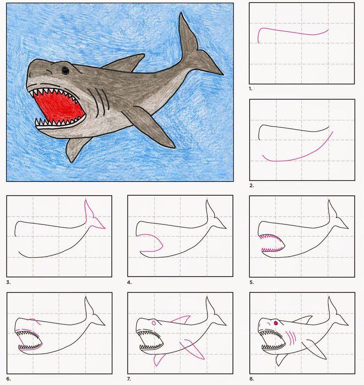 تعلم رسم سمكة قرش خطوة بخطوة