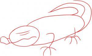 how-to-draw-a-crocodile-step-1_1_000000005849_3