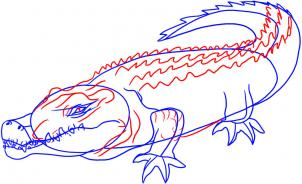 how-to-draw-a-crocodile-step-3_1_000000005851_3