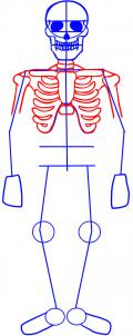how-to-draw-a-skeleton-step-3_1_000000012952_3