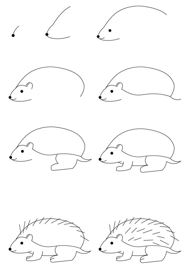 تعلم رسم قنفذ