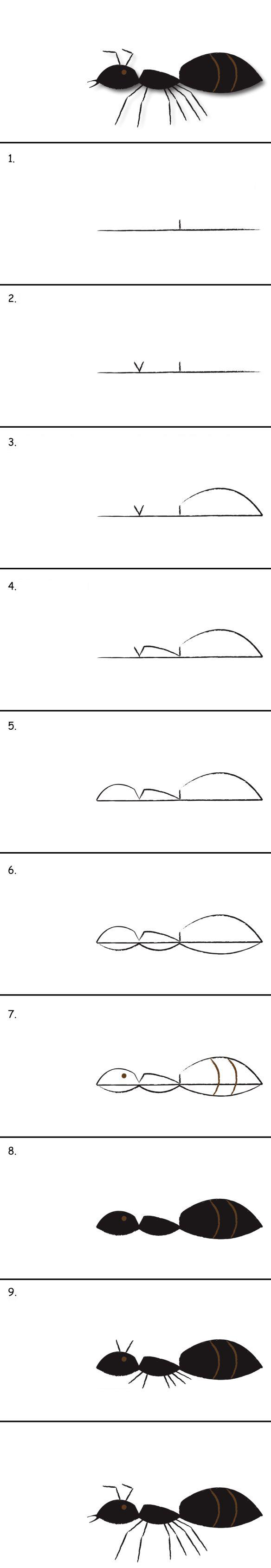 تعلم رسم نملة