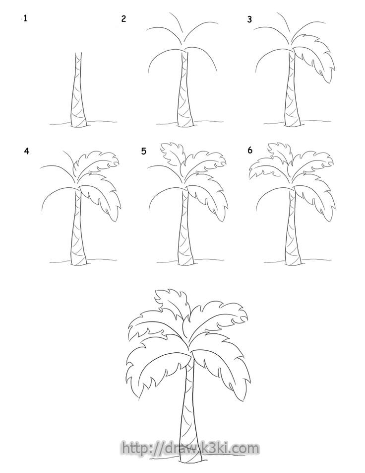 تعلم رسم شجرة النخيل