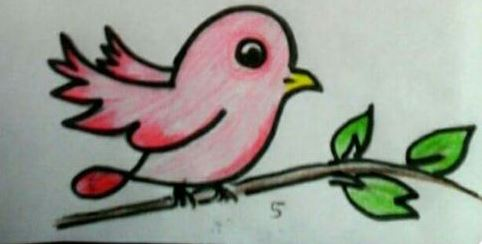 انصهار يعوض كرو رسم طيور للاطفال Comertinsaat Com