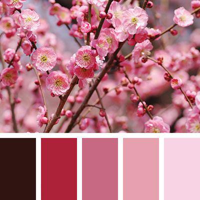 صور من فصل الربيع لتلوينها