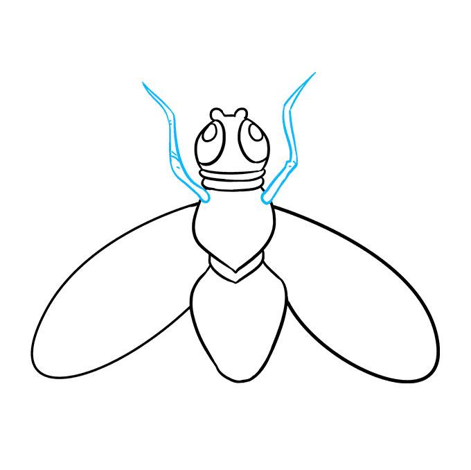 كيفية رسم الذبابة
